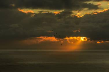 Stock-wolfworx-Sunrise-Imk59115 by wolfworx