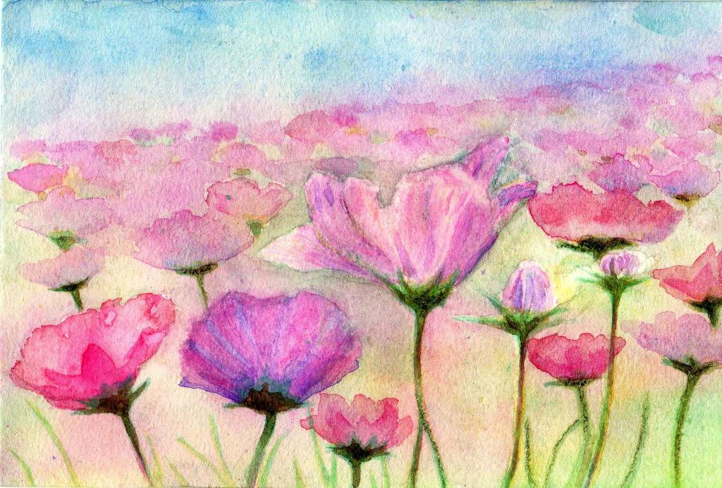 Cosmos field(Watercolor pencil) by FUJIAOI on DeviantArt