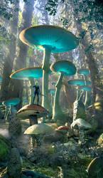Ancient Mushroom Forest by Scott Richard 04.08.21