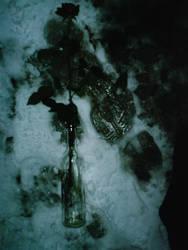 footprints in my heart