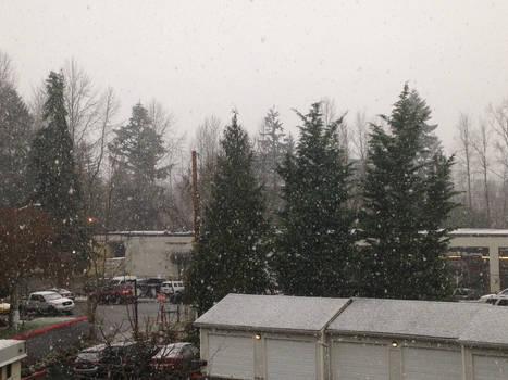 Snow! Woohoo!