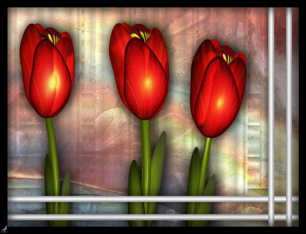 Tulips from Holland by coby01