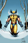 Wolverine on the snow