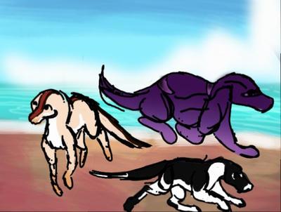 Exploring 3-3 by Dorosaury