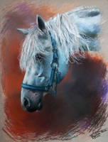 gray in blue by martak92