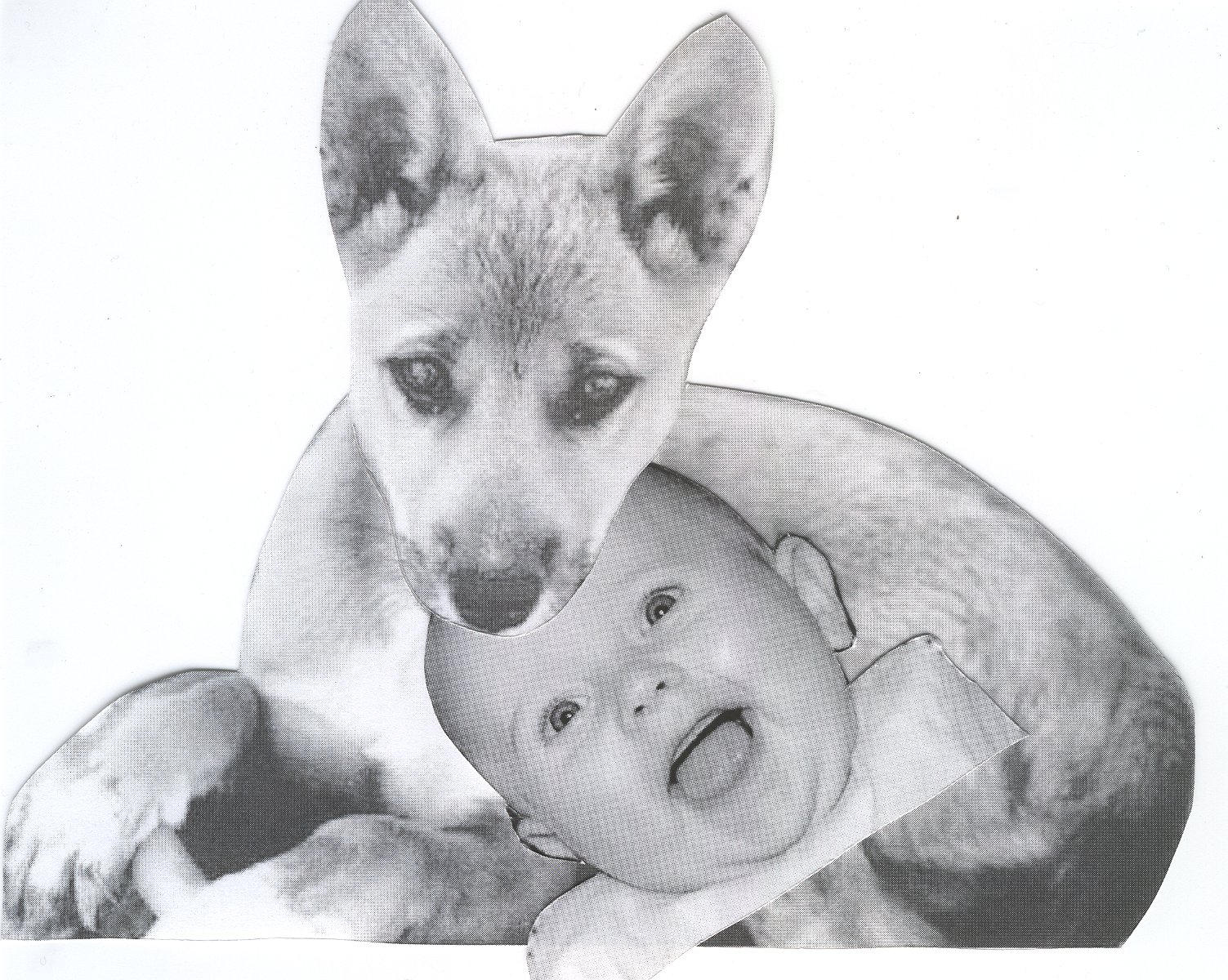 the Dingo Ate Your Bab...