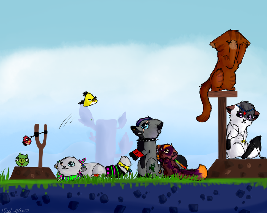 Angry birds XD by MissLayira