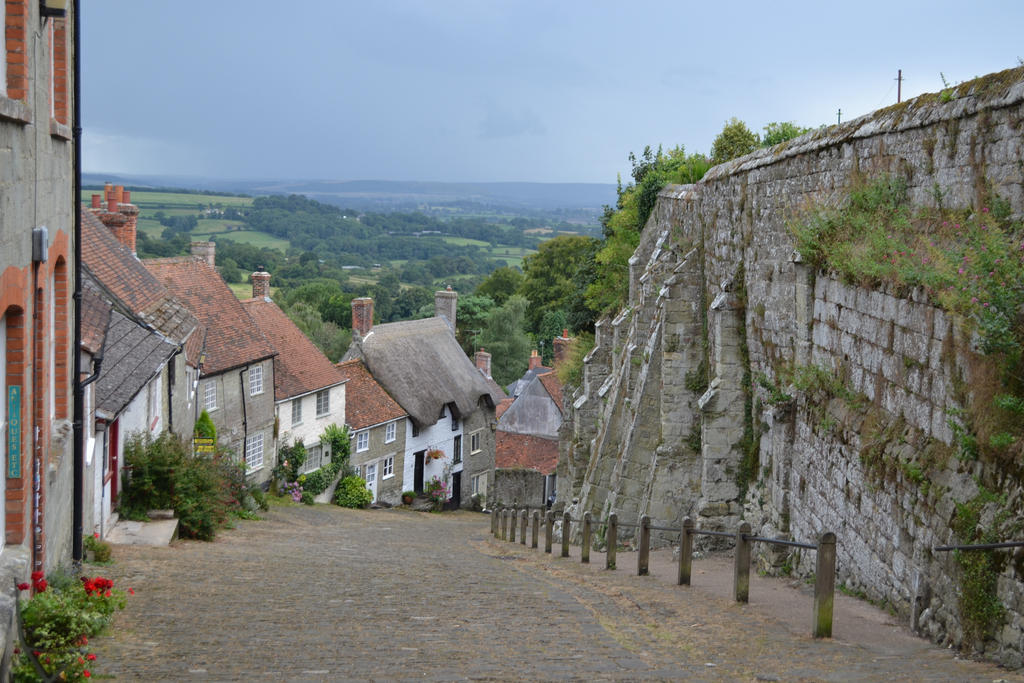 shaftesbury chatrooms Serving the best sunday roast and fish & chips in shaftesbury near blackmore  vale the shaftesbury is a family friendly pub with british pub food and cask beer.