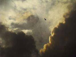 sky_ by PSIHEYA