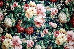 Floral Texture 1-Stock