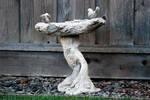 Bird Bath-Stock