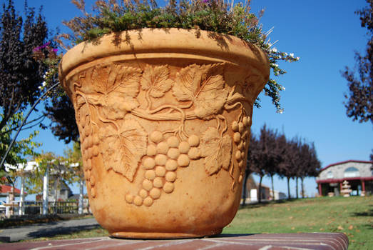 Flower Pot 2-Stock