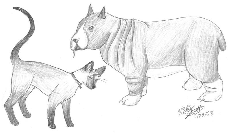 Cat and Dog Drawings Easy