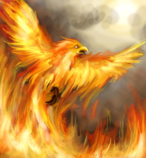 phoenix rising acceptance essay