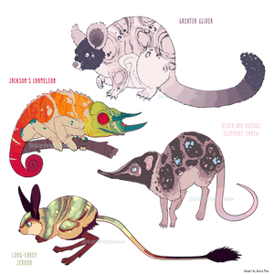 Adopts (Open)