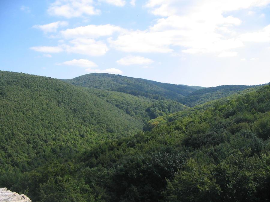 Mountains Mecsek 1