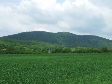 Mountains Mecsek 5