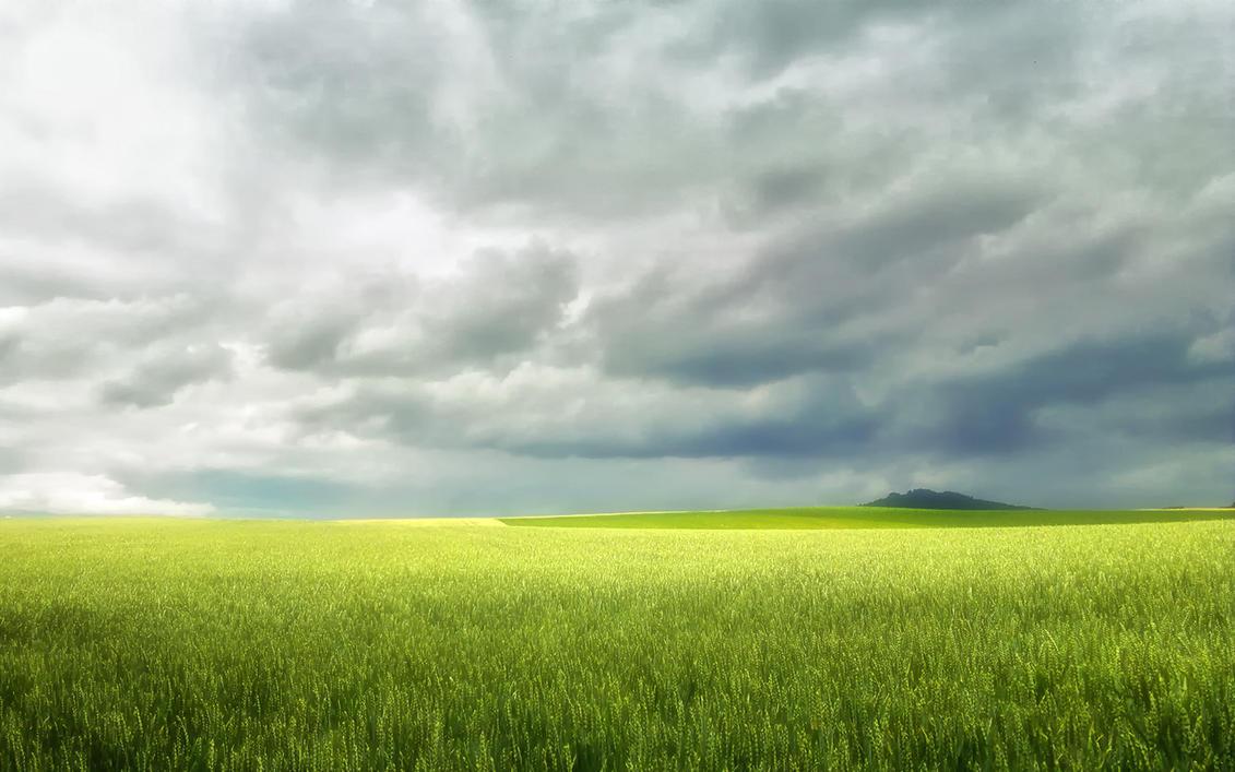 Haunted Field by tripiatrik