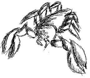 Unknown Arachnid by DelinquentDeego
