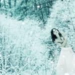 Frozen heart by Lionique