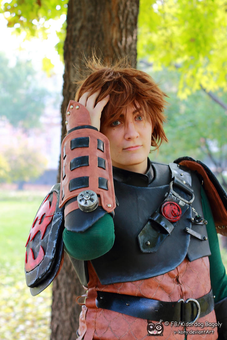 how to train your dragon 2 hiccup age