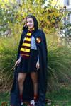 Gryffindor student 2