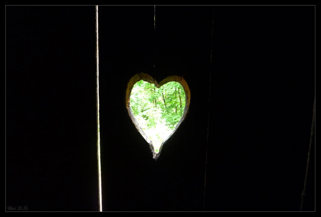 Heart in the Wall by knirket