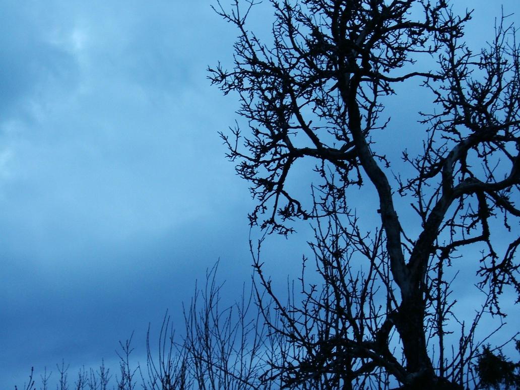 Depressed trees? by knirket