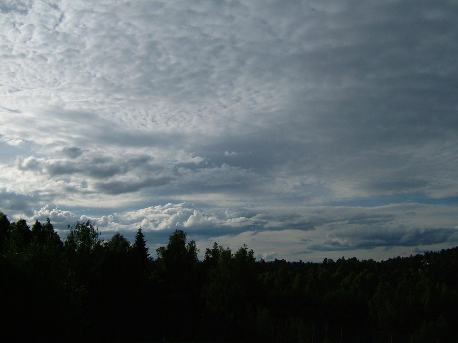 Daylight by knirket