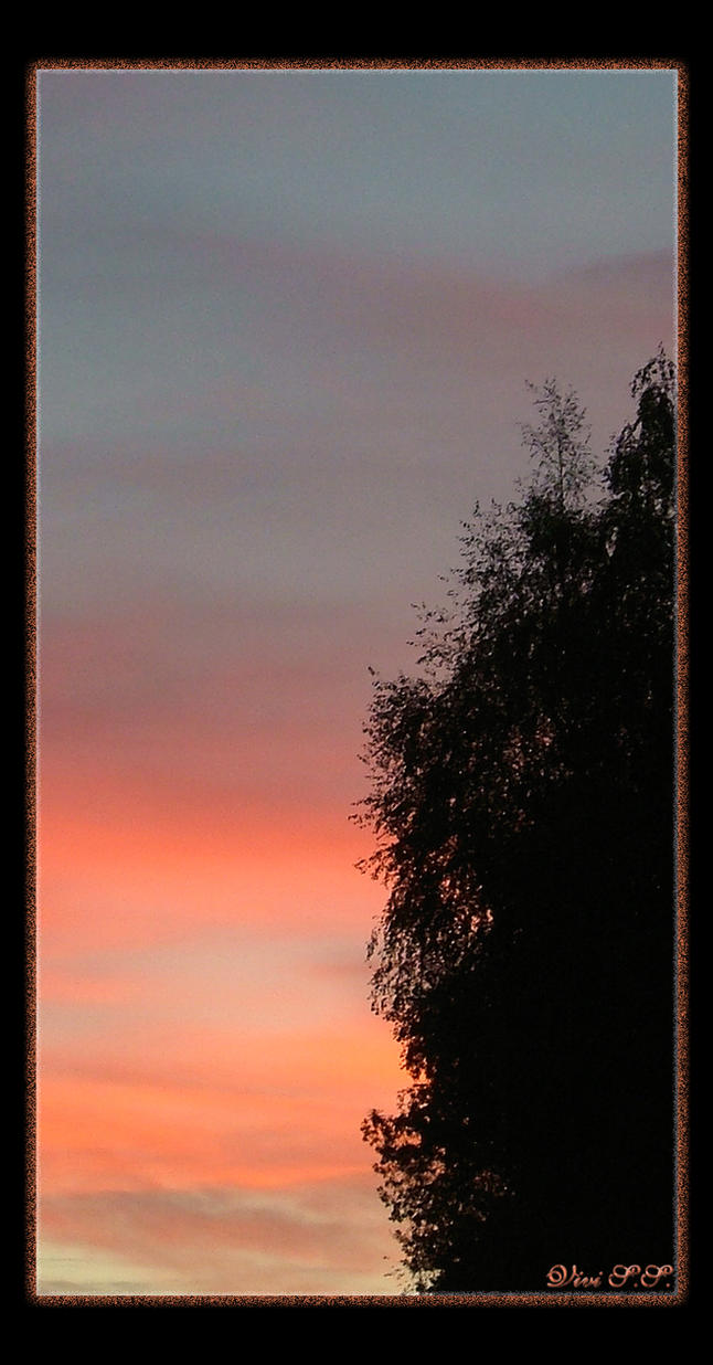 Late sky.. by knirket