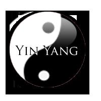 Yin and Yang by SaelPalani