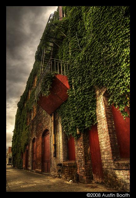 Palace hotel by austinboothphoto
