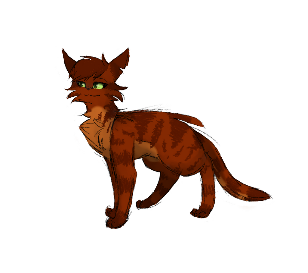 Apprentices Warrior Cats Untold Tales: ElementClan -- Fire, Water, Wind, And Earth