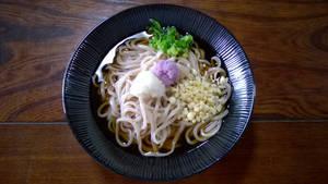 Handmade Udon With 2 Radish Flavours
