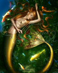 Golden fish by mashamaklaut