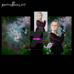 Photoshop digital background, Wise Crow