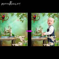 Photoshop digital background, Parrot Castle