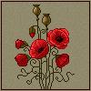 Poppies by Shumshum