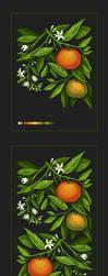 Pixel Art: tangerines by Shumshum