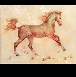 Apple Horse by Shumshum