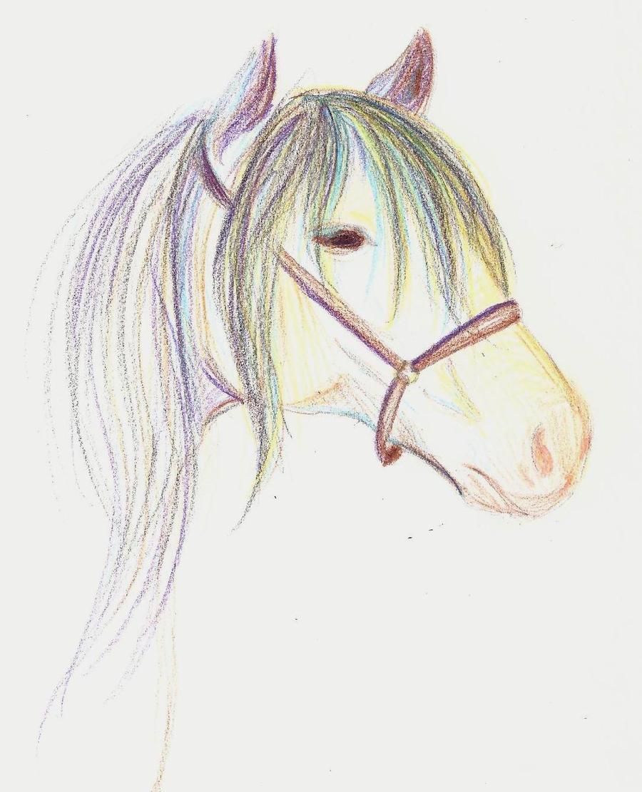((RL life horse practice by askponyswan