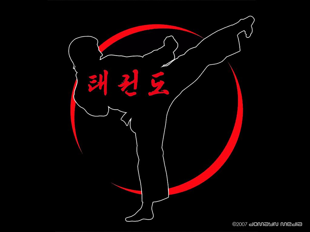 Taekwondo on Pinterest : Martial Arts, Deviantart and Brazilian Jiu ...