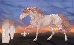 adopt | direct sale | closed