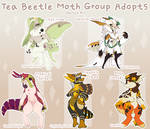 Tea Beetle Group Adopts: Moth Batch #1 (1/5 OPEN)