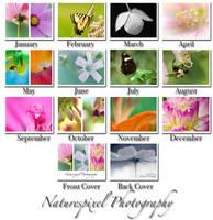 Naturespixel Calendar by Sonny2005