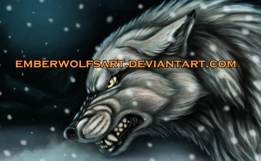 EmberWolfsArt's Profile Picture