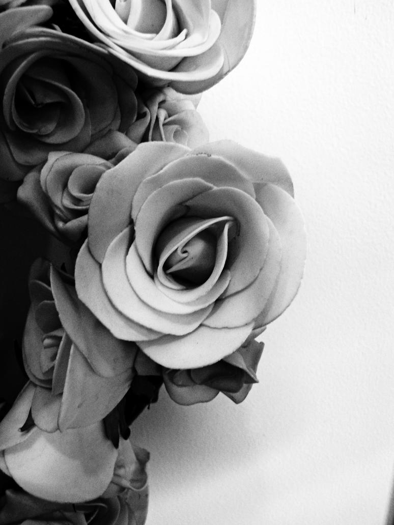 Black and white silk roses by danielle23 on deviantart black and white silk roses by danielle23 mightylinksfo