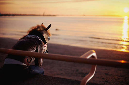 Horsy and the Lonely Sunset