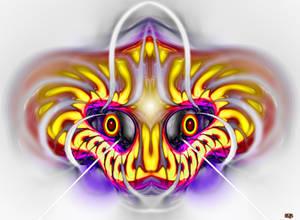 SLYGER  Dragonfly113