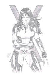 X23 by Dannith
